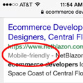 mobile friendly label in Google